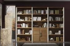 Wohnwand Regal Wandregal Kernbuche massiv geölt individuell planbar