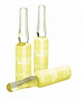 ETRE BELLE Ampoule Essence Cell Protect 1, 5 ml x 10 Ampullen mit CELLIGENT