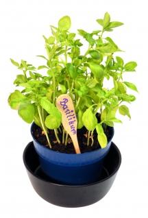 Pflanzschild aus feinem Buchenholz - ideal für Ihren Garten - Vorschau 4