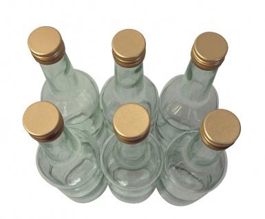 6 x Spirituosenflasche ? 0, 5 Liter ? mit goldenem Schraubdeckel