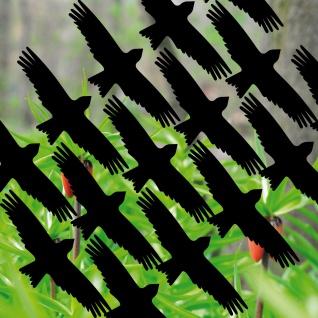 16 Aufkleber 10cm schwarz Milan Vogel Fenster Warnvögel Vogelschreck Vogelschutz