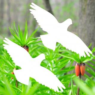 Warnvögel 20cm weiß Habicht Vögel Warnvogel Aufkleber Vogel Glas Fenster Schutz