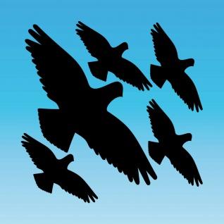 Warnvogel Set S schwarz Habicht Aufkleber Tattoo Vogel Fenster Glas Schutz Folie
