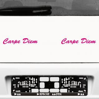 2 Stück Carpe Diem 20cm pink Schriftzug Aufkleber Tattoo Auto die cut Deko Folie