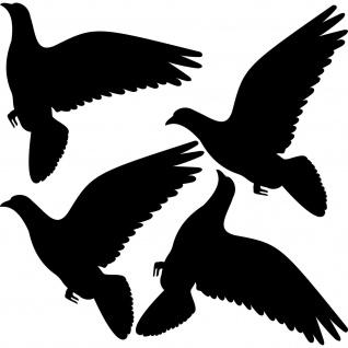 4 Aufkleber Tattoo 20cm schwarz Tauben Warnvogel Fenster Wintergarten Balkon