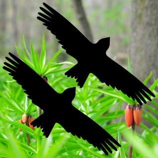 Warnvögel 25cm schwarz Milan Vögel Warnvogel Aufkleber Vogel Fenster Glas Schutz