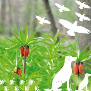 Set weiß Hunde Welpen Warnvögel Aufkleber Tattoo Fenster Vogel Schutz Deko Folie