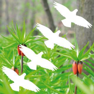 4 Aufkleber 10cm Habicht weiß Vogel Fenster Warnvögel Vogelschutz Vogelschreck