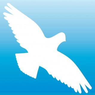 Warnvogel Aufkleber 30cm weiß Habicht Vogel Schreck Fenster Schutz Deko Folie