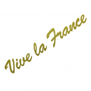 20cm gold Vive la france Schriftzug Aufkleber Tattoo Auto Tür Fenster Deko Folie