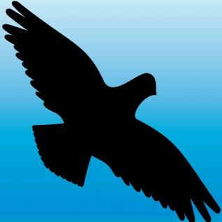 7 teiliges Set 35cm schwarz Vogel Warnvögel Vogelschlag Vogelschutz Vogelschreck