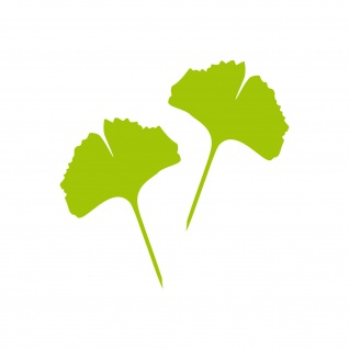 1 Paar 2 Blätter 12cm grün Ginkgo Blatt Aufkleber Tattoo Gingko 4061963037577