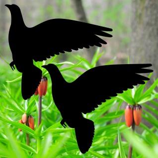 Warnvögel 20cm schwarz Taube Vögel Warnvogel Aufkleber Vogel Fenster Glas Schutz