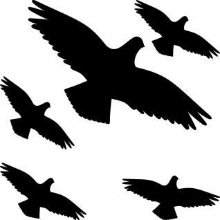 Warnvogel Aufkleber 15cm schwarz Habicht Vogel Schreck Fenster Schutz Deko Folie