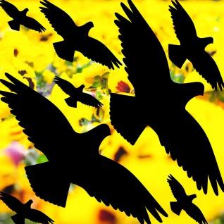 25cm Set schwarz Vogel Aufkleber Glas Schutz Warnvögel Fenster Tattoo Deko Folie