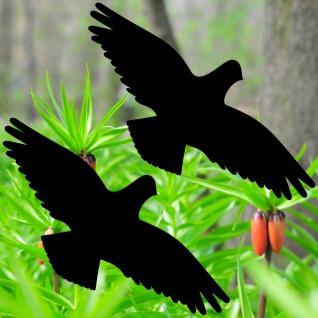 Warnvögel 30cm schwarz Habicht Vögel Warnvogel Aufkleber Vogel Fenster Schutz