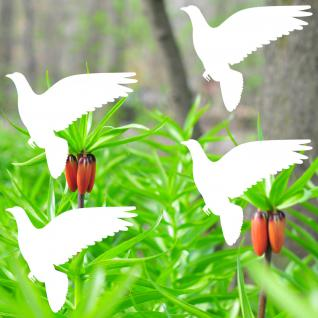 4 Aufkleber 10cm Taube Vogel weiß Fenster Warnvögel Vogelschutz Vogelschreck