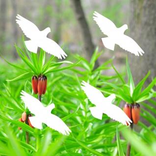 4 Aufkleber 10cm Habicht weiß Vogel Fenster Glas Scheiben Schutz Deko Folie