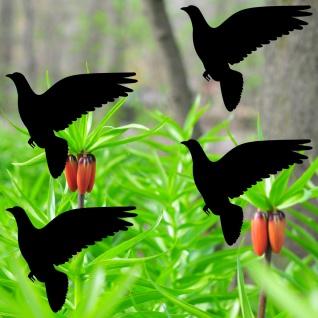Warnvögel 10cm schwarz Taube Vögel Warnvogel Aufkleber Vogel Fenster Glas Schutz