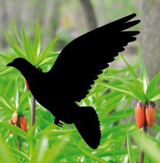 6 Aufkleber 20cm Taube schwarz Warnvogel Vogel Fenster Glas Schutz Deko Folie