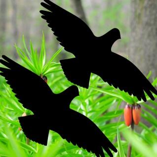Warnvögel 40cm schwarz Habicht Vögel Warnvogel Aufkleber Vogel Fenster Schutz