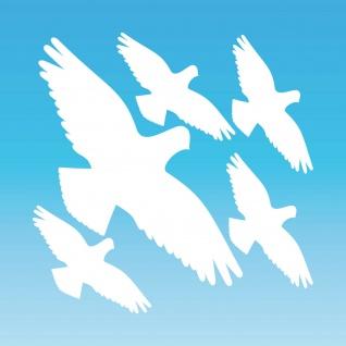 Warnvogel Set S weiß Habicht Aufkleber Tattoo Vogel Fenster Glas Schutz Folie