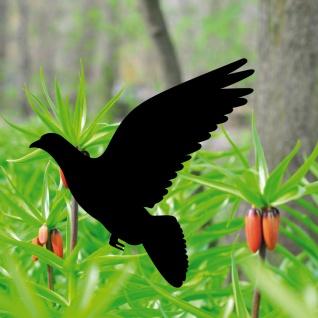 Aufkleber Taube 20cm schwarz Tattoo Folie Vogel Fenster Tier Schutz Warnvogel