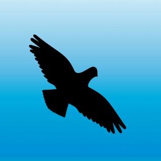 Warnvogel Aufkleber 8cm schwarz Habicht Vogel Schreck Fenster Schutz Deko Folie