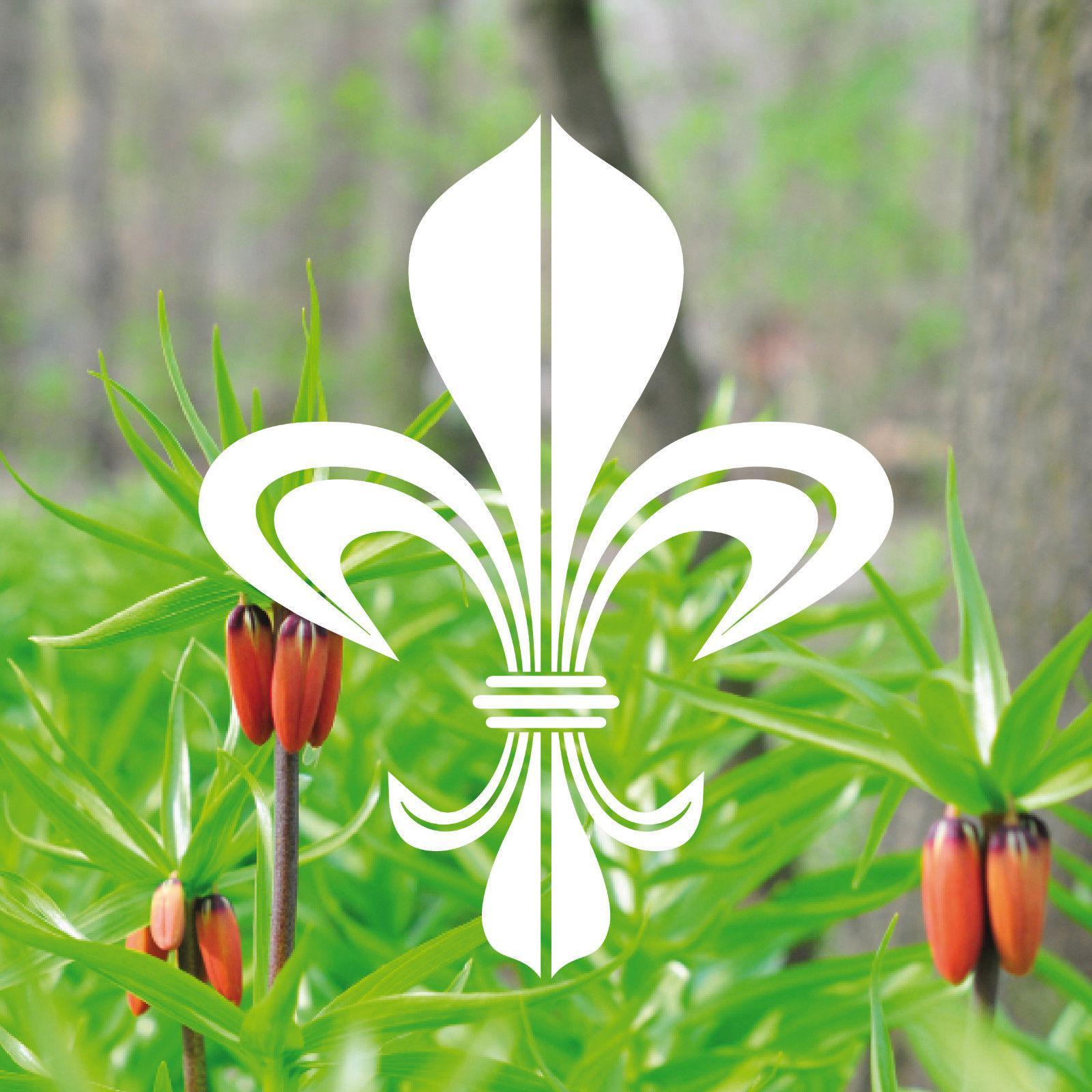 4 aufkleber tattoo 17cm wei bourbon lilie fleur de lis. Black Bedroom Furniture Sets. Home Design Ideas