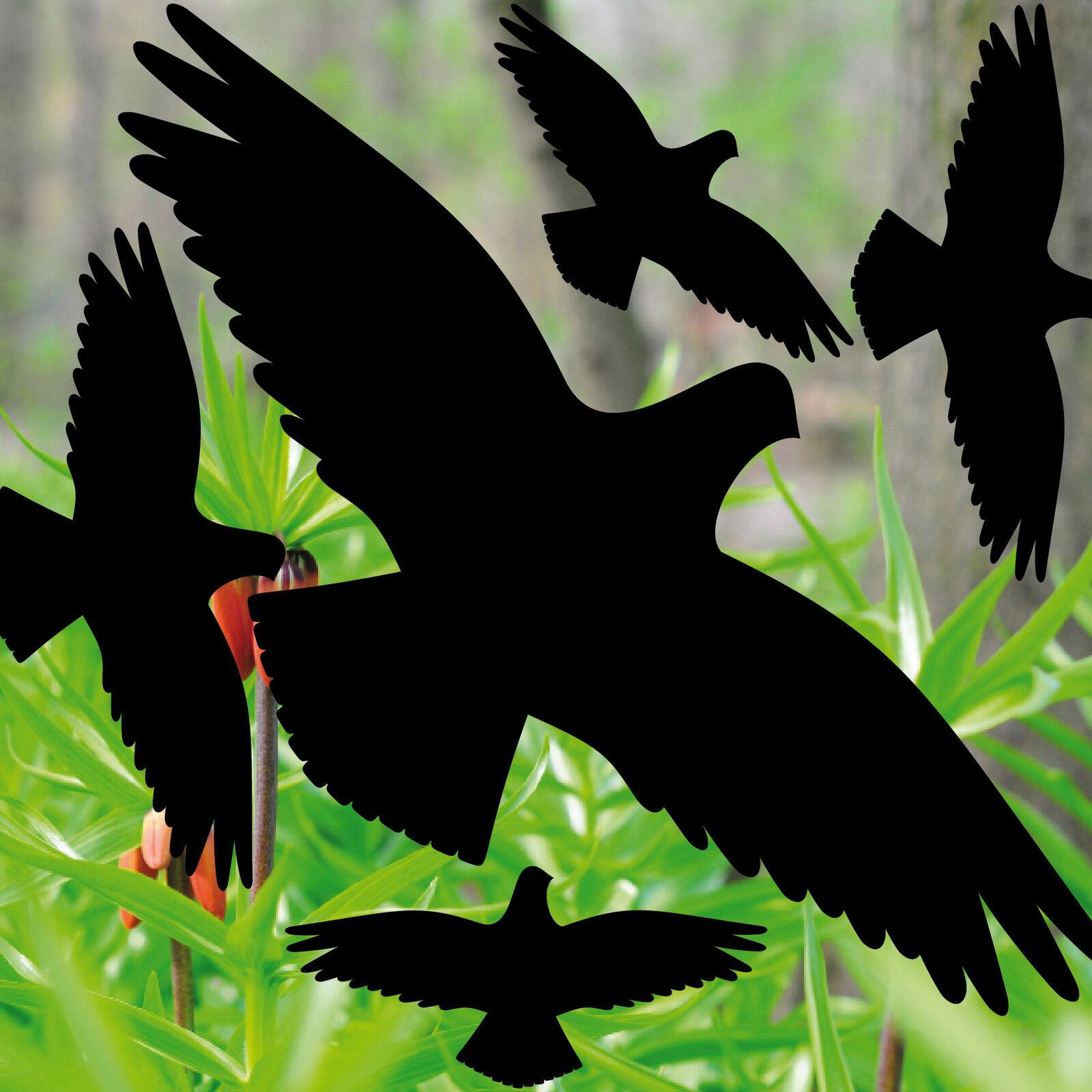 Vogelschutz Für Fensterscheiben