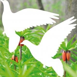Warnvögel 20cm weiß Taube Vögel Warnvogel Aufkleber Vogel Fenster Glas Schutz