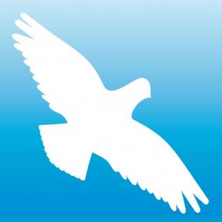 Warnvogel Aufkleber 25cm weiß Habicht Vogel Schreck Fenster Schutz Deko Folie