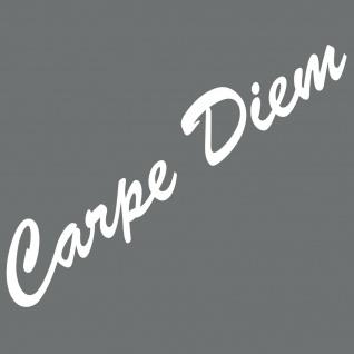 20cm weiß Carpe Diem Schriftzug Aufkleber Tattoo Auto Tür Fenster Deko Folie