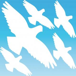 Warnvogel Set L weiß Habicht Aufkleber Tattoo Vogel Fenster Glas Schutz Folie
