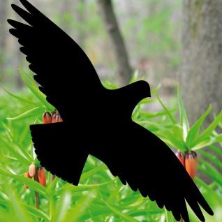 4 Aufkleber 40cm Habicht schwarz Fenster Deko Folie Vögel Warnvögel Vogelschutz
