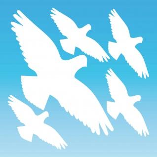 Warnvogel Set M weiß Habicht Aufkleber Tattoo Vogel Fenster Glas Schutz Folie