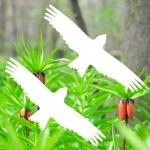 4 Aufkleber 20cm weiß Greif Milan Fensterglas Vogelschutz Dekofolie Warnvögel