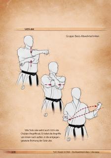 """Spectra Verlag Buch """" Die Karate-essenz"""" Budo-books - Vorschau 4"""