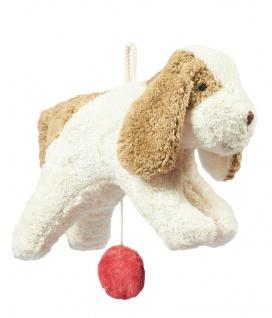 SENGER Y21506 - Spieluhr Hund