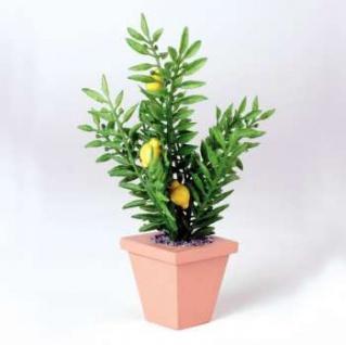Bodo Hennig 27592 - Zitruspflanze für Puppenstube