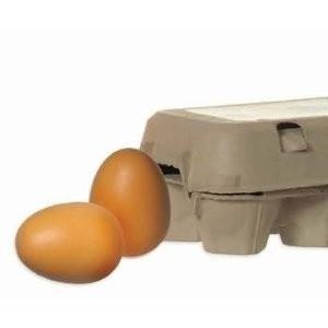 ERZI 17011 - Eier, braun im Karton