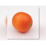 ERZI 11110 - Orange
