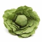 ERZI 12280 - Salatkopf