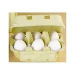 ERZI 17010 - Eier, weiß im Karton