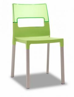 Design Stuhl grün transparent ausgbleichte Buche