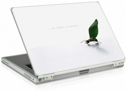 """SL Netbook Aufkleber Schutz-Folie bis 11, 1"""" Notebook Laptop Skin Sticker Cover"""