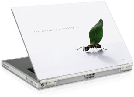 "SL Notebook Skin 11, 6"" Aufkleber für Acer Aspire One Toshiba Medion Akoya Mini"