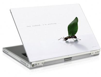 """SL Notebook Skin 15, 6"""" 16"""" 16, 4"""" Aufkleber Working Ant Laptop Sticker Folie Case"""