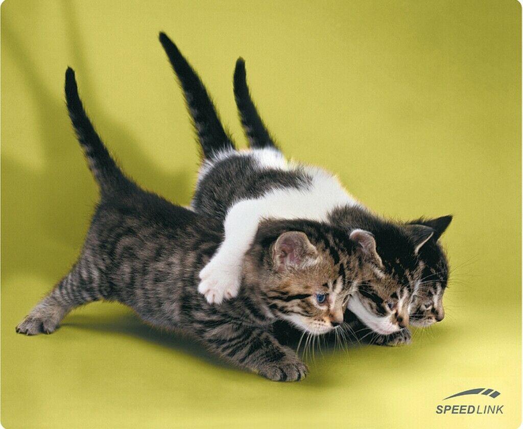 Speedlink Sl 6242 Mouse Pad Cats Maus Pad Baby Katzen Katze Für Pc Notebook Etc