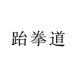 Hama Car Tattoo Seitenscheibenaufkleber Auto Sticker Aufkleber TaekWonDo Silber